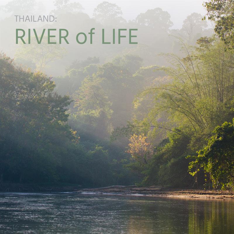 Thailand: River of Life - Album Cover