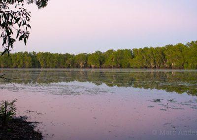 Sweetwater Lagoon at dawn