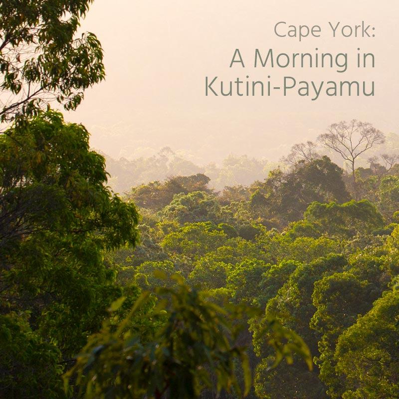 A Morning in Kutini-Payamu - Album Cover