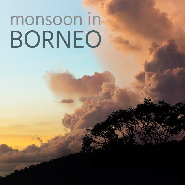 Monsoon in Borneo - Album Cover