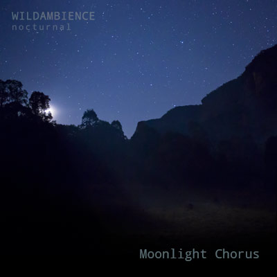 Moonlight Chorus - Album Cover